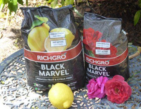 Richgro – Black Marvel for Roses & Citrus