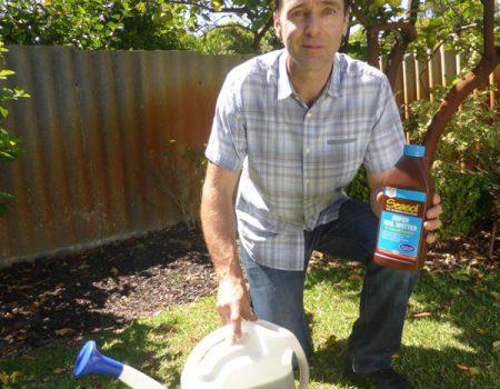 Seasol – Super Soil Wetter with Seasol