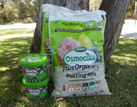 Evergreen Garden Care – Osmocote Organics